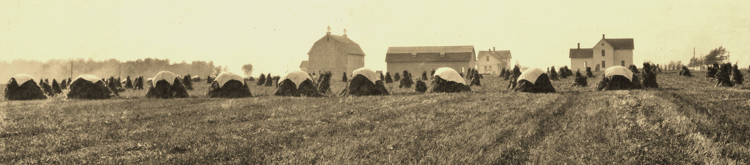 Hay stacks at the station in early 1900s